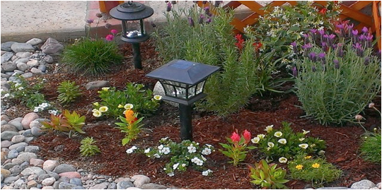Marvelous The Importance Of Drought Tolerant Gardens In LA U2026 And What You Can Do  About It