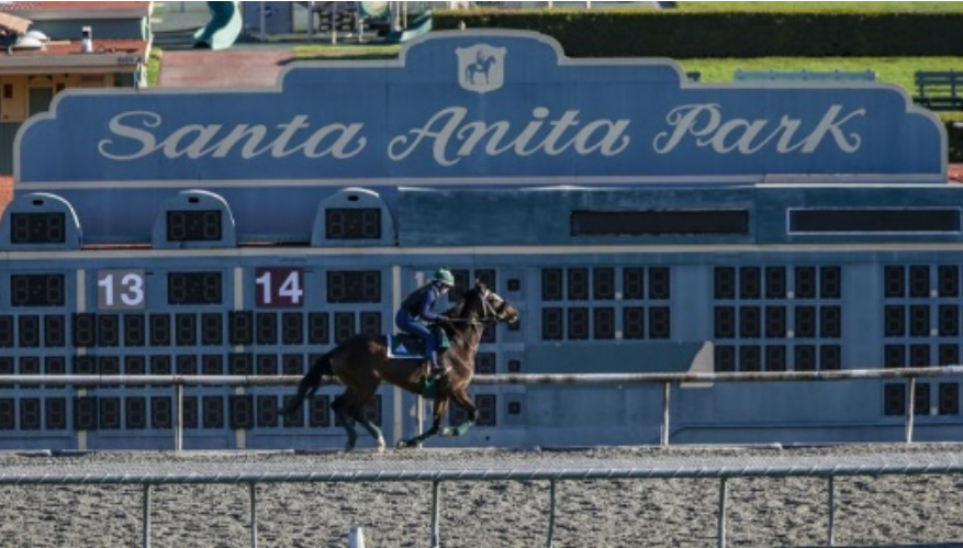 CityWatch Today: The Deaths at Santa Anita Remind Me Why I Don't